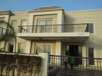 3750 sqft, 4 bhk Villa in Omaxe Mulberry Villas Mullanpur, Mohali at Rs. 1.7500 Cr