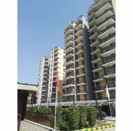1805 sqft, 3 bhk Apartment in Builder trishla city Patiala Road, Mohali at Rs. 46.9000 Lacs
