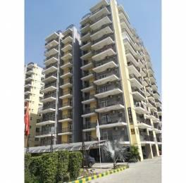 1805 sqft, 3 bhk Apartment in Builder Trishla city Patiala Road Zirakpur, Chandigarh at Rs. 46.9000 Lacs