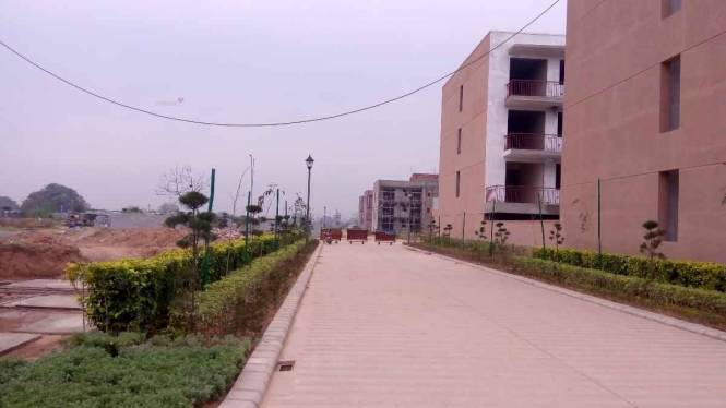 1725 sqft, 3 bhk Apartment in Builder Omaxe Cassia 2nd Floors Mullanpur, Mohali at Rs. 61.5000 Lacs