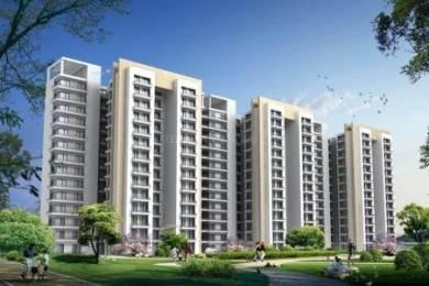 590 sqft, 1 bhk Apartment in Pivotal Devaan Sector 84, Gurgaon at Rs. 14.0600 Lacs