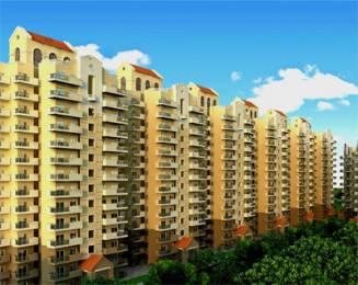 600 sqft, 1 bhk Apartment in Pivotal Devaan Sector 84, Gurgaon at Rs. 14.1800 Lacs