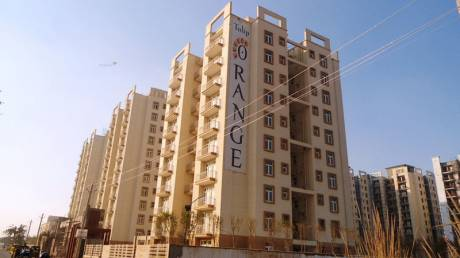 1137 sqft, 3 bhk Apartment in Tulip Orange Sector 70, Gurgaon at Rs. 75.0000 Lacs
