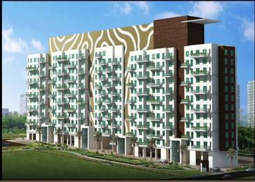 1600 sqft, 3 bhk Apartment in Karia Konark Meadows Wagholi, Pune at Rs. 75.0000 Lacs