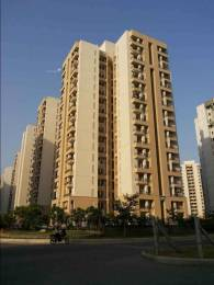 1356 sqft, 3 bhk Apartment in Jaypee Kosmos Sector 134, Noida at Rs. 52.5000 Lacs