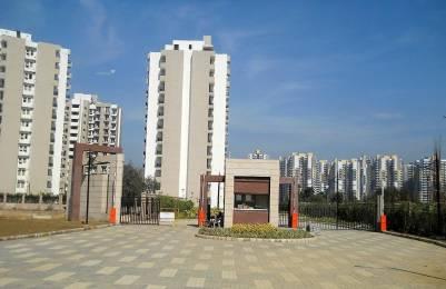 1050 sqft, 2 bhk Apartment in Mapsko Paradise Sector 83, Gurgaon at Rs. 45.0000 Lacs
