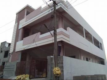 1710 sqft, 3 bhk BuilderFloor in Builder Project Paipula Road, Vijayawada at Rs. 1.3000 Cr