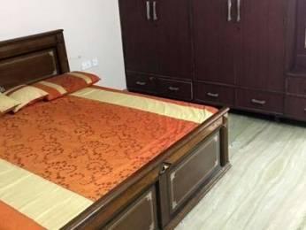1593 sqft, 4 bhk Villa in Builder Project Pitampura, Delhi at Rs. 7.7500 Cr
