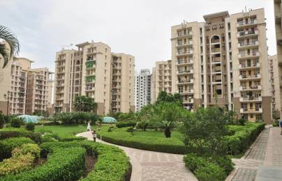 1265 sqft, 3 bhk Apartment in Purvanchal Group Builders Silver City II Sector Pi- II Gr Noida, Greater Noida at Rs. 55.0000 Lacs