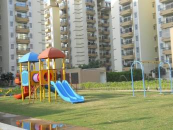 2050 sqft, 3 bhk Apartment in Amrapali Grand Zeta, Greater Noida at Rs. 65.0000 Lacs