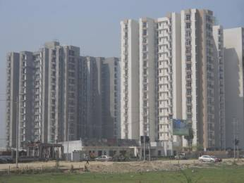 1045 sqft, 2 bhk Apartment in Proview Technocity CHI 5, Greater Noida at Rs. 11000