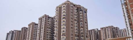 1075 sqft, 2 bhk Apartment in Amrapali Zodiac Sector 120, Noida at Rs. 47.0000 Lacs