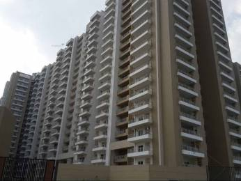 1495 sqft, 3 bhk Apartment in Gulshan Ikebana Sector 143, Noida at Rs. 70.0000 Lacs