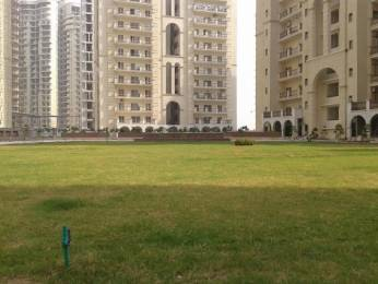 1685 sqft, 3 bhk Apartment in Sunshine Sunshine Helios Sector 78, Noida at Rs. 17000