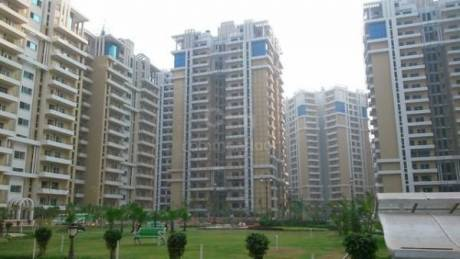 1950 sqft, 3 bhk Apartment in Purvanchal Royal Park Sector 137, Noida at Rs. 1.1000 Cr