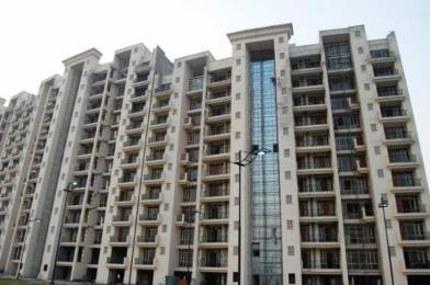 2433 sqft, 3 bhk Apartment in Parsvnath Panorama Swarn Nagri, Greater Noida at Rs. 17000