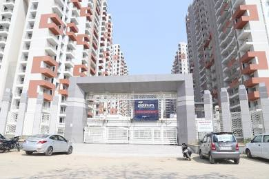 1150 sqft, 2 bhk Apartment in Ace Platinum Zeta 1 Zeta, Greater Noida at Rs. 8000