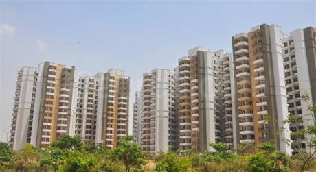1164 sqft, 2 bhk Apartment in Stellar MI Citihomes Omicron, Greater Noida at Rs. 8500