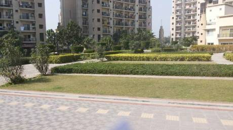1540 sqft, 3 bhk Apartment in ATS Dolce Zeta, Greater Noida at Rs. 15000