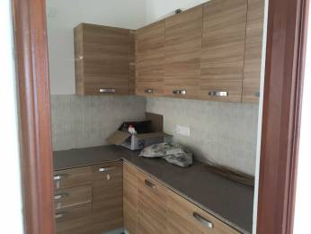 1240 sqft, 2 bhk Apartment in ATS Dolce Zeta, Greater Noida at Rs. 13000