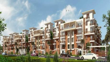 1250 sqft, 2 bhk Apartment in SVS Palms Doddanekundi, Bangalore at Rs. 25000