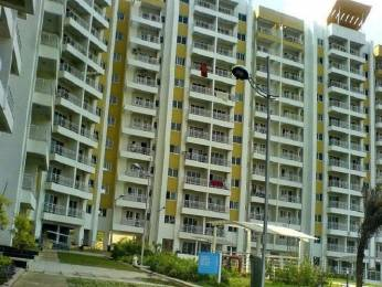 1615 sqft, 3 bhk Apartment in Mantri Mantri Flora Sarjapur Road Till Wipro, Bangalore at Rs. 42000