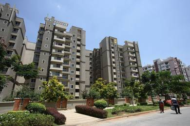 1750 sqft, 3 bhk Apartment in Sobha Primrose Bellandur, Bangalore at Rs. 32000