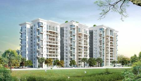 1800 sqft, 3 bhk Apartment in The Address The Five Summits Whitefield Hope Farm Junction, Bangalore at Rs. 40500
