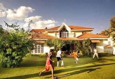 2400 sqft, 4 bhk Villa in Adarsh Palm Meadows Ramagondanahalli, Bangalore at Rs. 70000