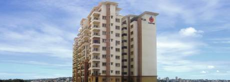 1690 sqft, 3 bhk Apartment in Akme Ballet Mahadevapura, Bangalore at Rs. 39000