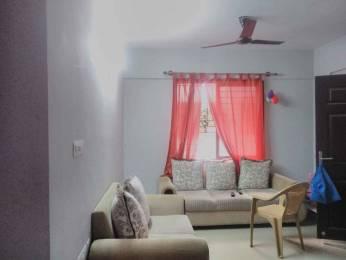 1555 sqft, 3 bhk Apartment in Sumadhura Anantham Singasandra, Bangalore at Rs. 24000