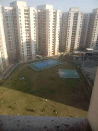 1358 sqft, 3 bhk Apartment in Jaypee Kosmos Sector 134, Noida at Rs. 49.0000 Lacs