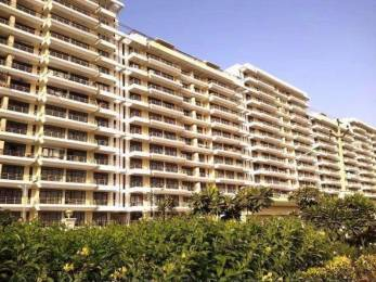 1264 sqft, 2 bhk Apartment in Builder Project Sampla Sonepat Road, Sonepat at Rs. 36.0000 Lacs