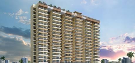 1775 sqft, 3 bhk Apartment in Builder Joy Callista Andheri, Mumbai at Rs. 3.0500 Cr