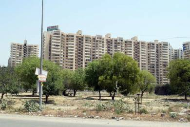 1110 sqft, 2 bhk Apartment in Exotica Fresco Sector 137, Noida at Rs. 66.0000 Lacs