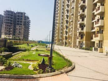 1114 sqft, 2 bhk Apartment in Nimbus Express Park View 2 CHI 5, Greater Noida at Rs. 33.4200 Lacs