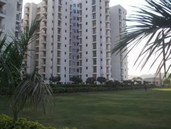 1164 sqft, 2 bhk Apartment in Piyush Heights Sector 89, Faridabad at Rs. 35.0000 Lacs