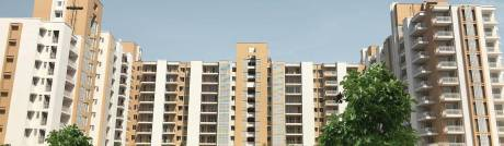 1300 sqft, 2 bhk Apartment in Puri Pratham Sector 84, Faridabad at Rs. 47.8500 Lacs