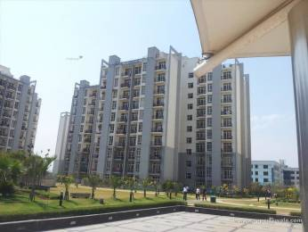 1147 sqft, 2 bhk Apartment in Builder Project Sector MU 1, Noida at Rs. 50.0000 Lacs