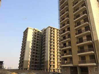1220 sqft, 2 bhk Apartment in Builder Project Sector-92 Gurgaon, Gurgaon at Rs. 52.0000 Lacs