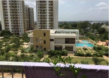 498 sqft, 1 bhk Apartment in Kalpataru Serenity Manjari, Pune at Rs. 11000