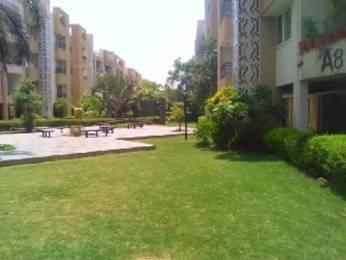 1805 sqft, 3 bhk Apartment in Pacifica La Habitat Thaltej, Ahmedabad at Rs. 25000