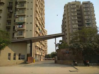 1557 sqft, 3 bhk Apartment in Poddar Palm Greens Makarba, Ahmedabad at Rs. 62.0000 Lacs