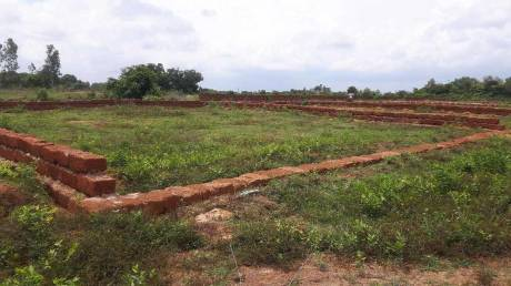 1500 sqft, Plot in Omm Info Colony Badaraghunathpur, Bhubaneswar at Rs. 9.7000 Lacs