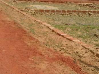 3000 sqft, Plot in Builder info houses Janla, Bhubaneswar at Rs. 18.6000 Lacs