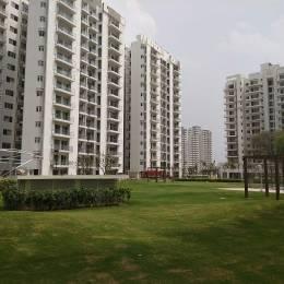 2285 sqft, 3 bhk Apartment in Microtek Greenburg Sector 86, Gurgaon at Rs. 1.4500 Cr