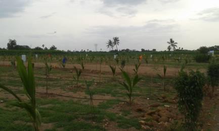 900 sqft, Plot in Builder Dharani Srinivasa Nagar Bank Colony, Vijayawada at Rs. 2.5000 Lacs