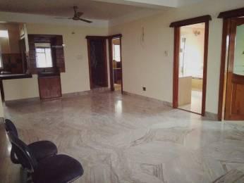 1100 sqft, 3 bhk Apartment in Builder Project Pradhan Nagar, Siliguri at Rs. 38.5000 Lacs