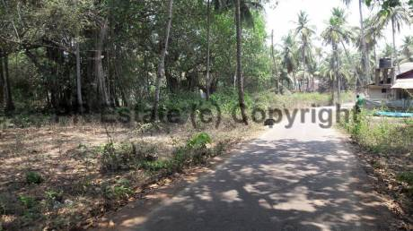 6889 sqft, Plot in Builder Project Benaulim, Goa at Rs. 77.0000 Lacs