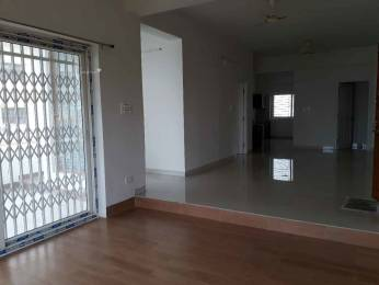 600 sqft, 1 bhk Apartment in Builder Project Kondapur Main, Hyderabad at Rs. 12000